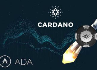 cardano staat aan het begin van eens stijging